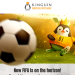 Kinguin is one of the world's largest online marketplaces selling video games